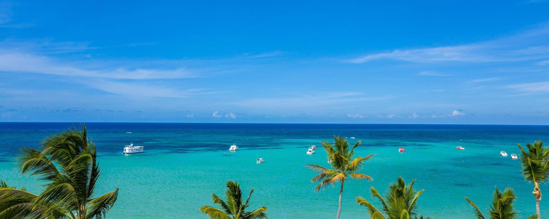 Dansk Punta Cana Guide