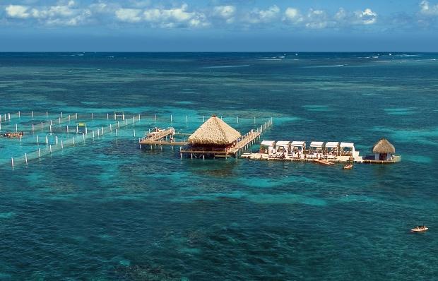 Reef Explorer - midt ude på havet