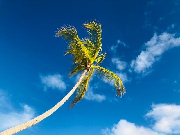Husk solbrillerne - også til dine børn - Dansk Punta Cana Guide